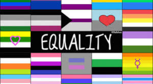 A collage of LGBT+ flags around the word Equality